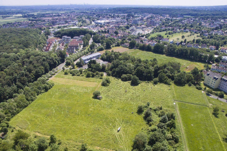 ÖkoSiedlung Friedrichsdorf