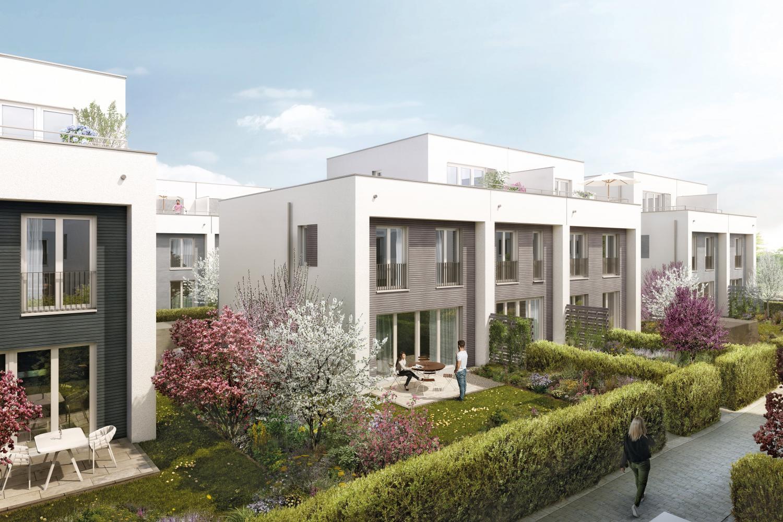 Gartenstadthäuser ÖkoSiedlung Friedrichsdorf